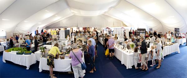 Skagen Food & Design Market er i fuld gang