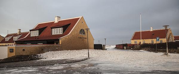 Masser af havskum i Gl. Skagen