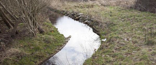 Flere indsigelser til vedtaget spildevandsplan
