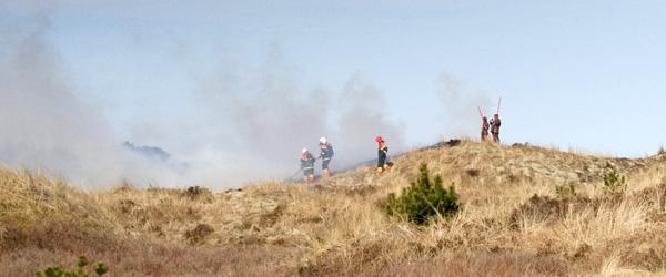 Brand i naturen