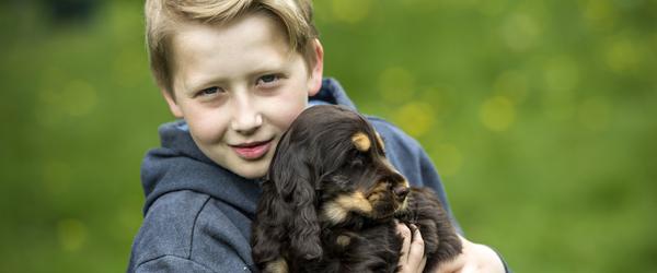 Har du kort på din hund?