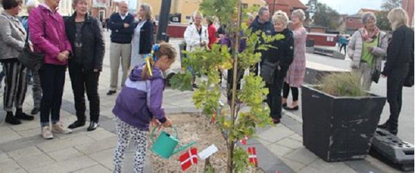 Egetræ til Kulturhus Kappelborg