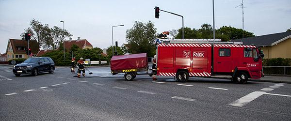 Lastbil tabte skidtfisk på kørebanen