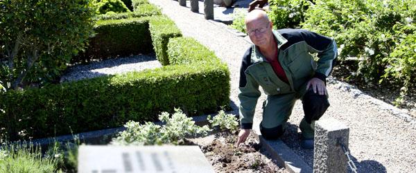 Der er stadig omfattende tyverier fra Assistents Kirkegård