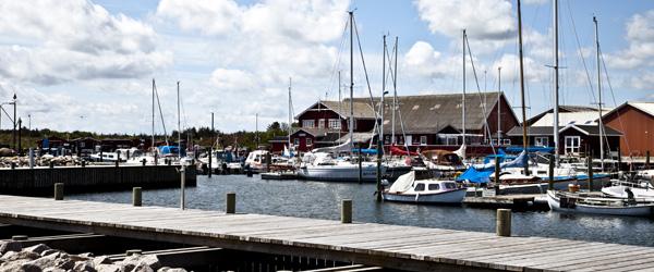 Valgt til bestyrelsen for Ålbæk Havn