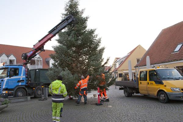 Juletræer og julebelysning koster hvert år 1,5 mio. kr.