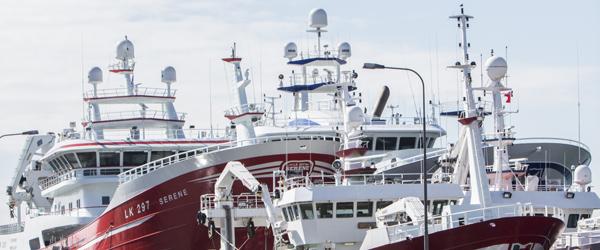 Skagen Havn udviser rekordoverskud