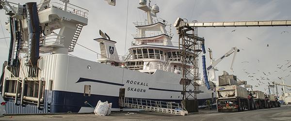 Næsten halvdelen af landets fisk landes nu i Skagen