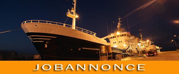 Skagen Havn søger ny havneassistent