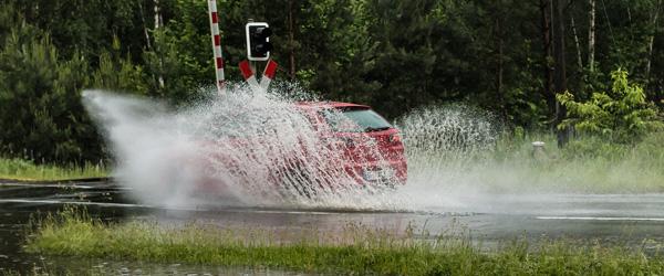 Vejret i 2020 gav mange regn- og stormskader