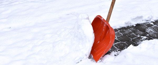 Sneen falder – hjælp din skraldemand