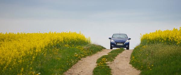 Forår! Sådan gør du bilen klar til årstiden