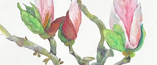 Lokal blomstermaler udstiller i Vilde Vaser