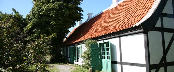 Guidede ture i Skagen til støtte for Stafet for Livet