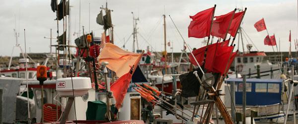 Skagen Havn ønsker at støtte lokale initiativer og arrangementer